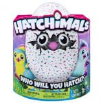Hatchimals Pengualas - Turquoise/roze