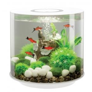 BiOrb Tube Aquarium 15 Liter LED Wit