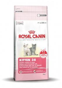 Royal Canin Kitten 2 Kg (3182550702423)