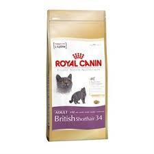 Royal Canin British Shorthair 4 Kg