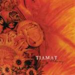 WILDHONEY -BONUS TR- + BONUSTRACK. Audio CD TIAMAT