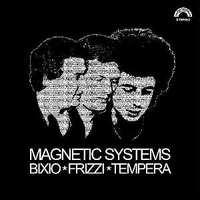 Magnetic Systems