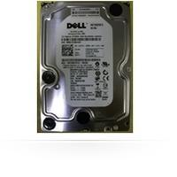 MicroStorage 1000GB SATA 3.5 MS-J317F