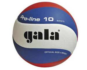 Gala Pro-line 5121S10 Volleybal