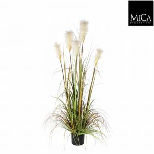 Mica Decorations Pluimgras Foxtail Maat In Cm: 120 X 45 Plastic